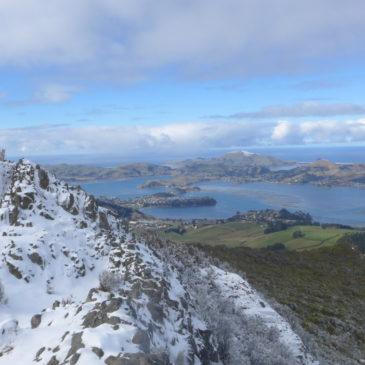 Winter in Dunedin